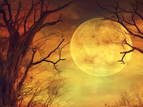 October 30-November 1, 2020 :: Full Moon Halloween Retreat